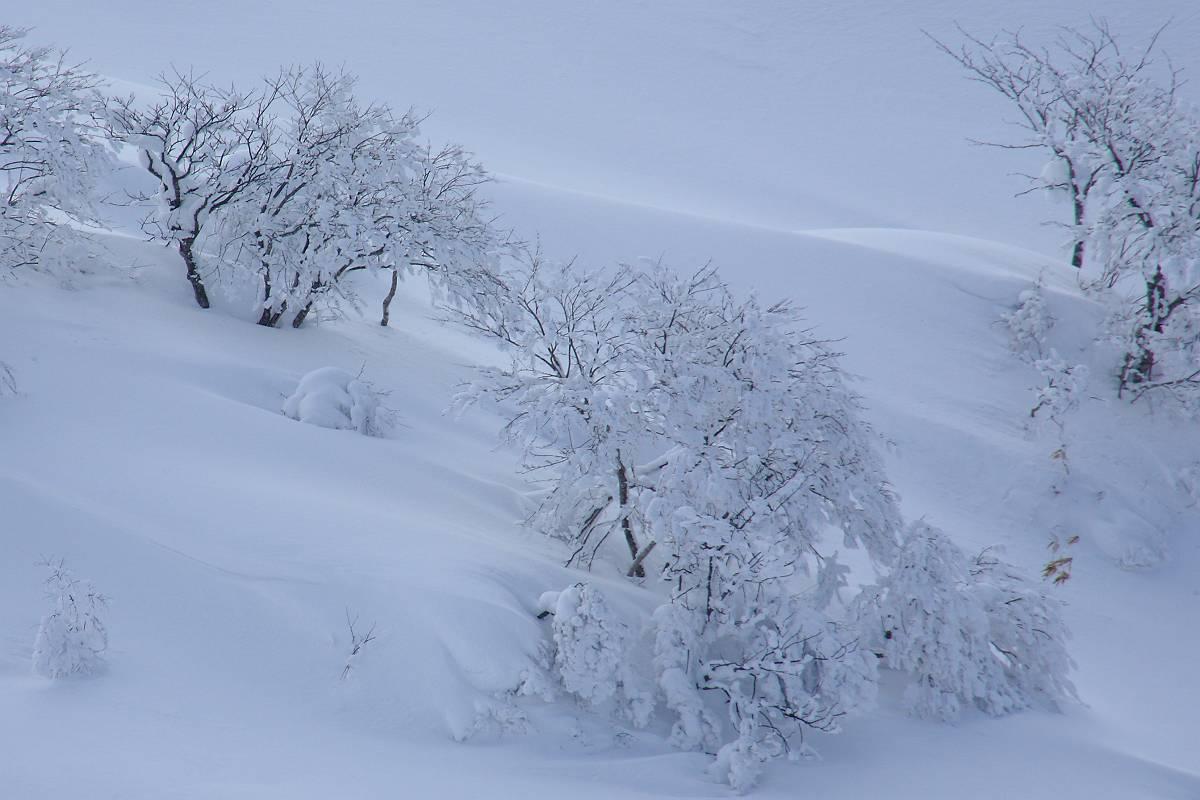 厳冬期の箕輪山の風景_d0106628_9224940.jpg