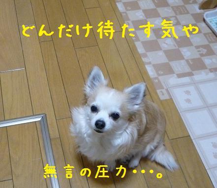 b0138430_11243154.jpg