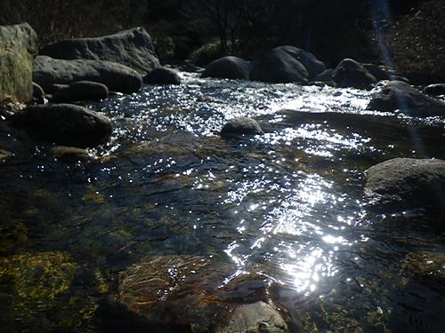 寒い狭い川_c0120834_2113476.jpg