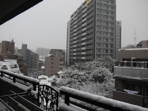 ※※ 雪  の  日 ※※_e0133535_22562462.jpg