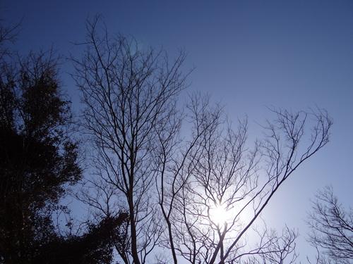 如月の空 ②_e0240147_17105322.jpg