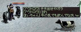 a0201367_3301528.jpg