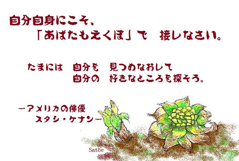 d0083472_14145598.jpg