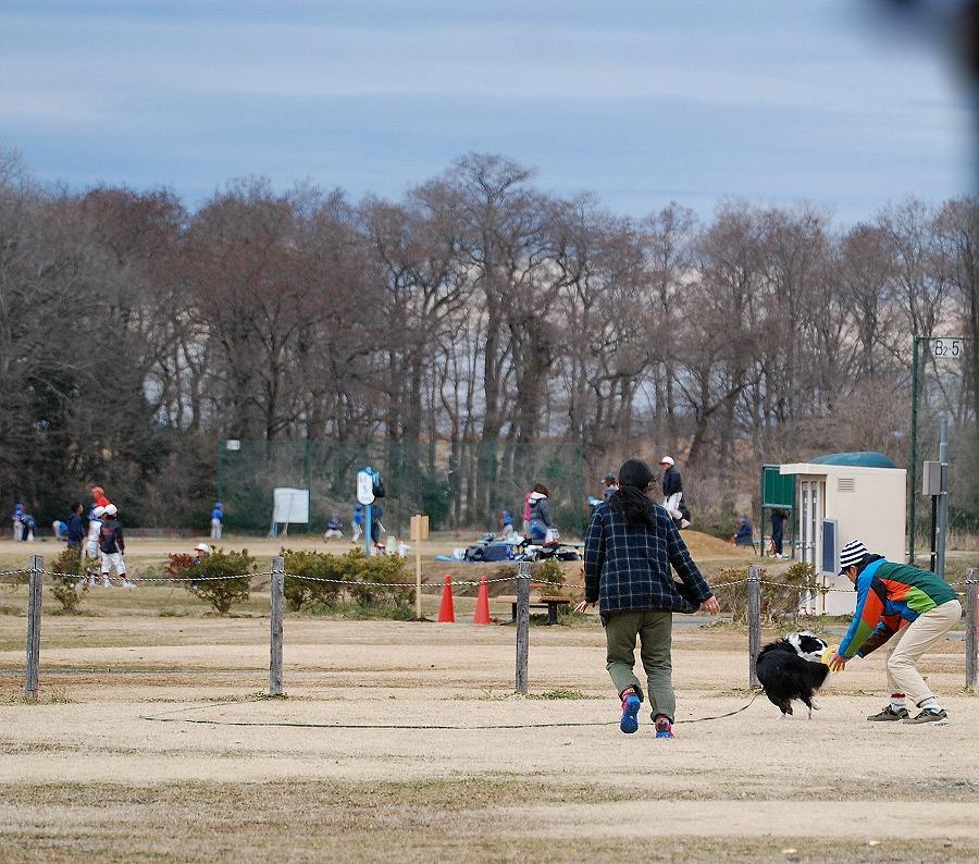 秋ケ瀬公園_c0187781_1759187.jpg