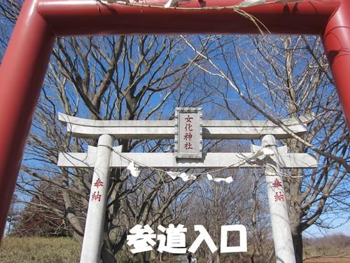 茨城県 竜ケ崎市 女化神社 初午祭_b0200291_2181162.jpg