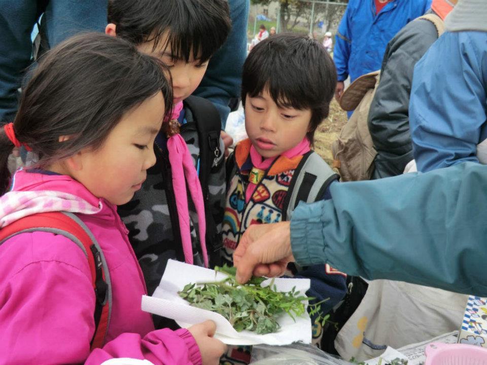 「お花見ウォーク」 元吉原地区の皆さんのおもてなし_f0141310_7472510.jpg