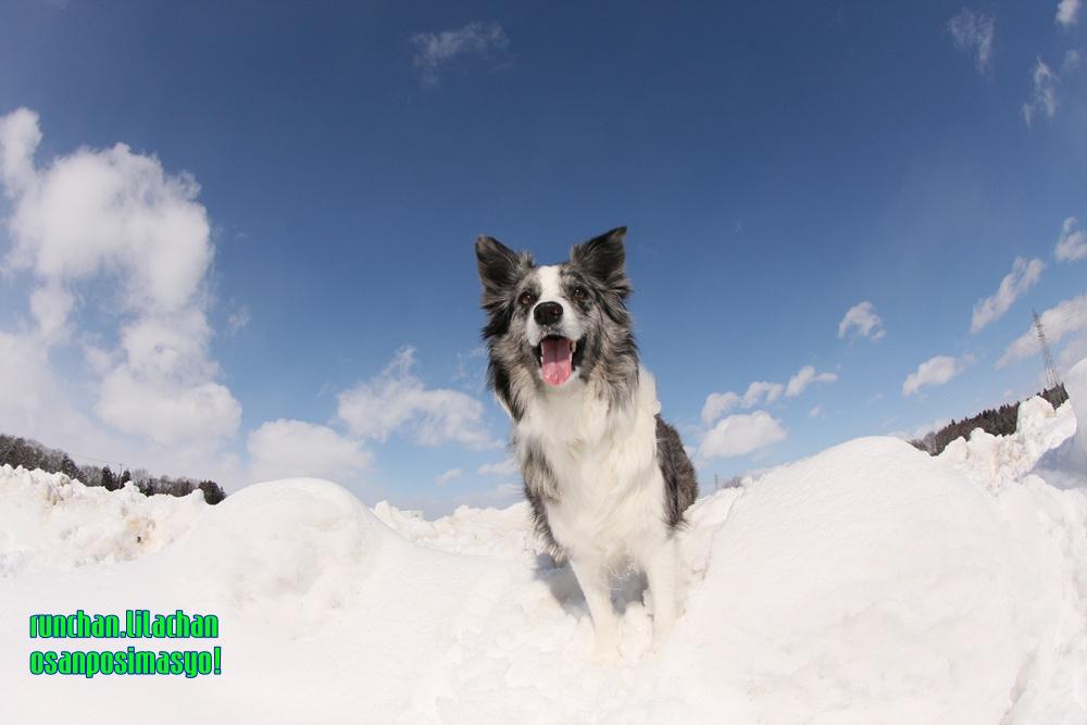 雪遊び_b0192121_18352327.jpg