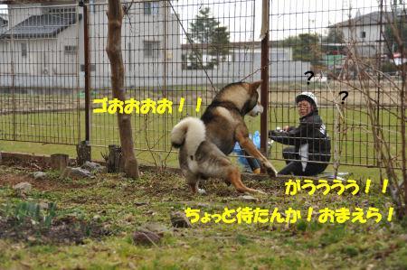 f0143123_19433858.jpg