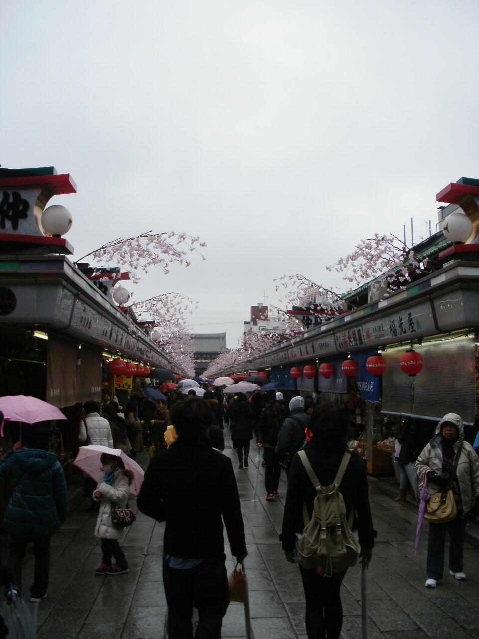 浅草から北鎌倉へ_f0095325_7194415.jpg