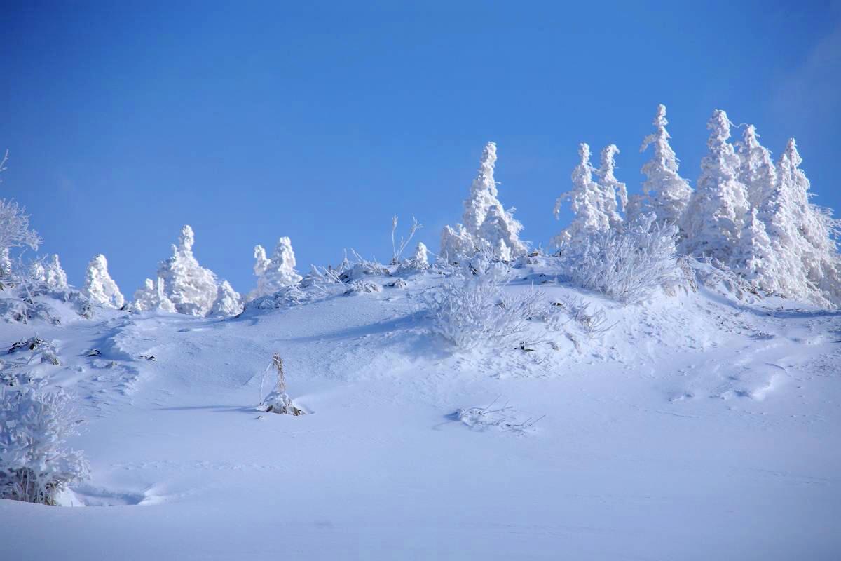 冬の箕輪山の風景_d0106628_1081552.jpg