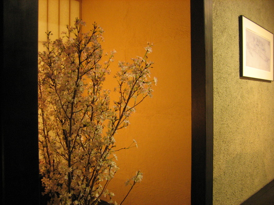 浅草・吾妻橋の建主「花辻」さんから頂いた山形の啓翁桜_d0021969_2553217.jpg