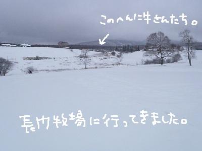 b0092580_15333943.jpg
