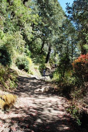 ブータン最大の聖地 タクツァン僧院へ_b0053082_23243576.jpg