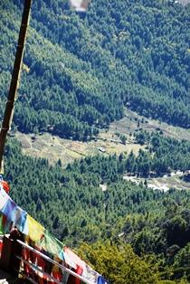 ブータン最大の聖地 タクツァン僧院へ_b0053082_2349315.jpg
