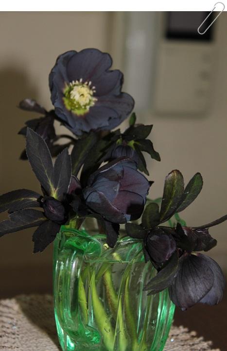 家の中が花いっぱい(*^_^*)_a0213806_17465013.jpg