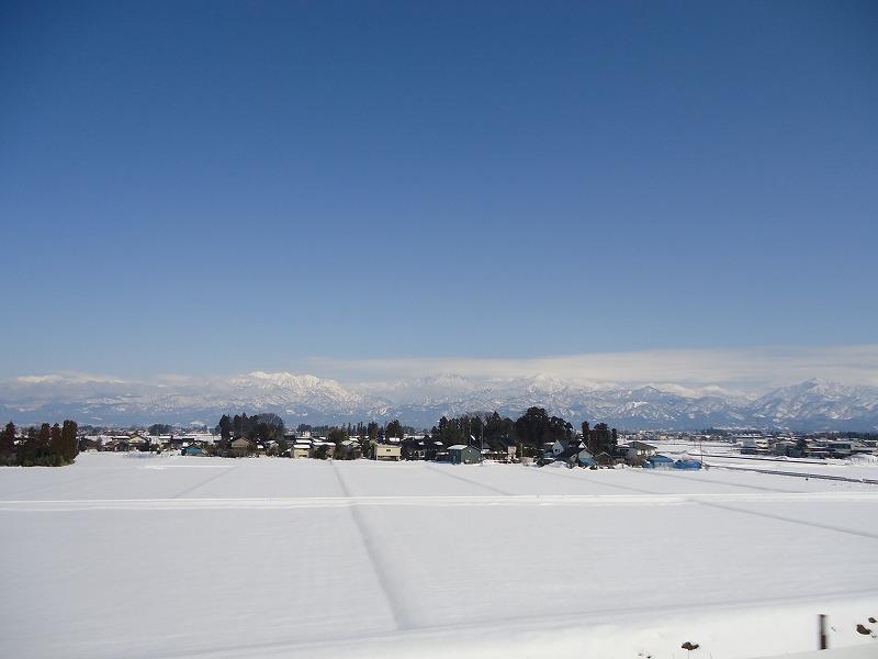 白&青で、超~久しぶりに快晴です。_e0181908_194594.jpg