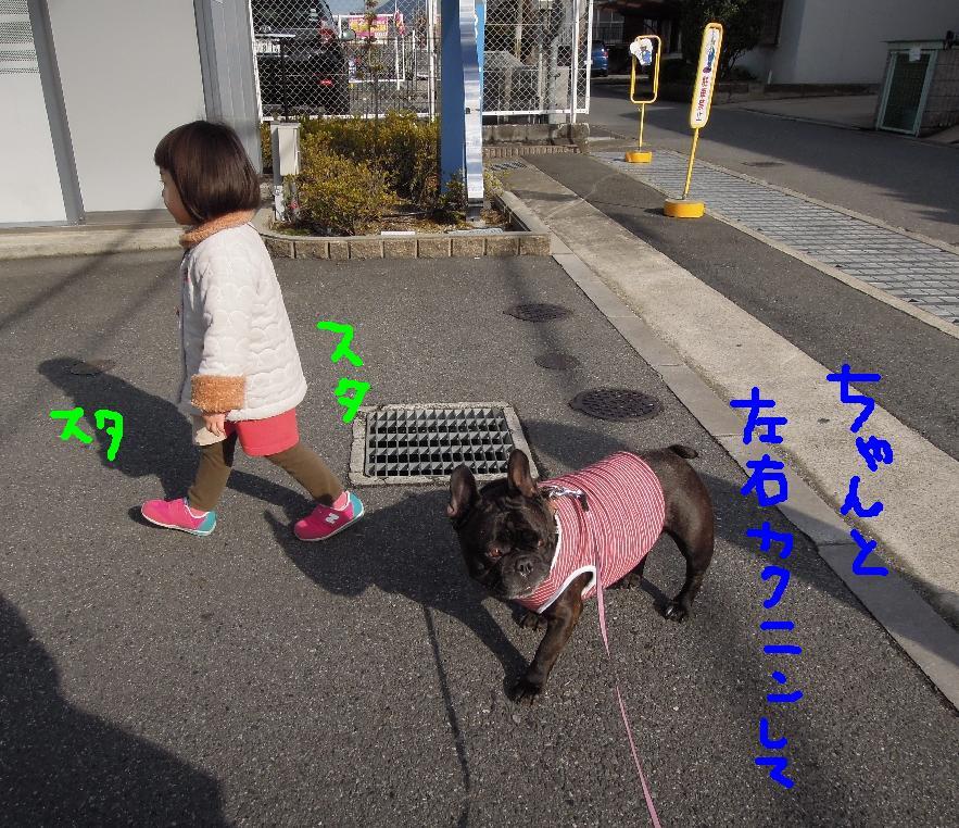 c0113109_22343042.jpg