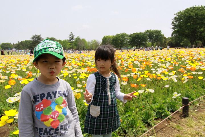 花がいっぱいの公園へ!お弁当を持って「ピクニックを楽しもう!」