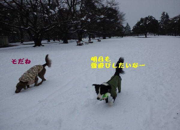 d0224111_2011645.jpg