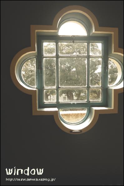 窓からの景色_f0100215_236065.jpg