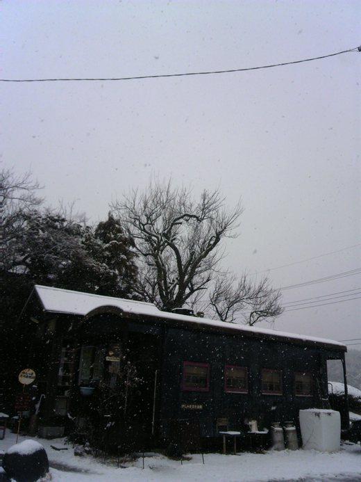 雪です。_a0213316_12414472.jpg