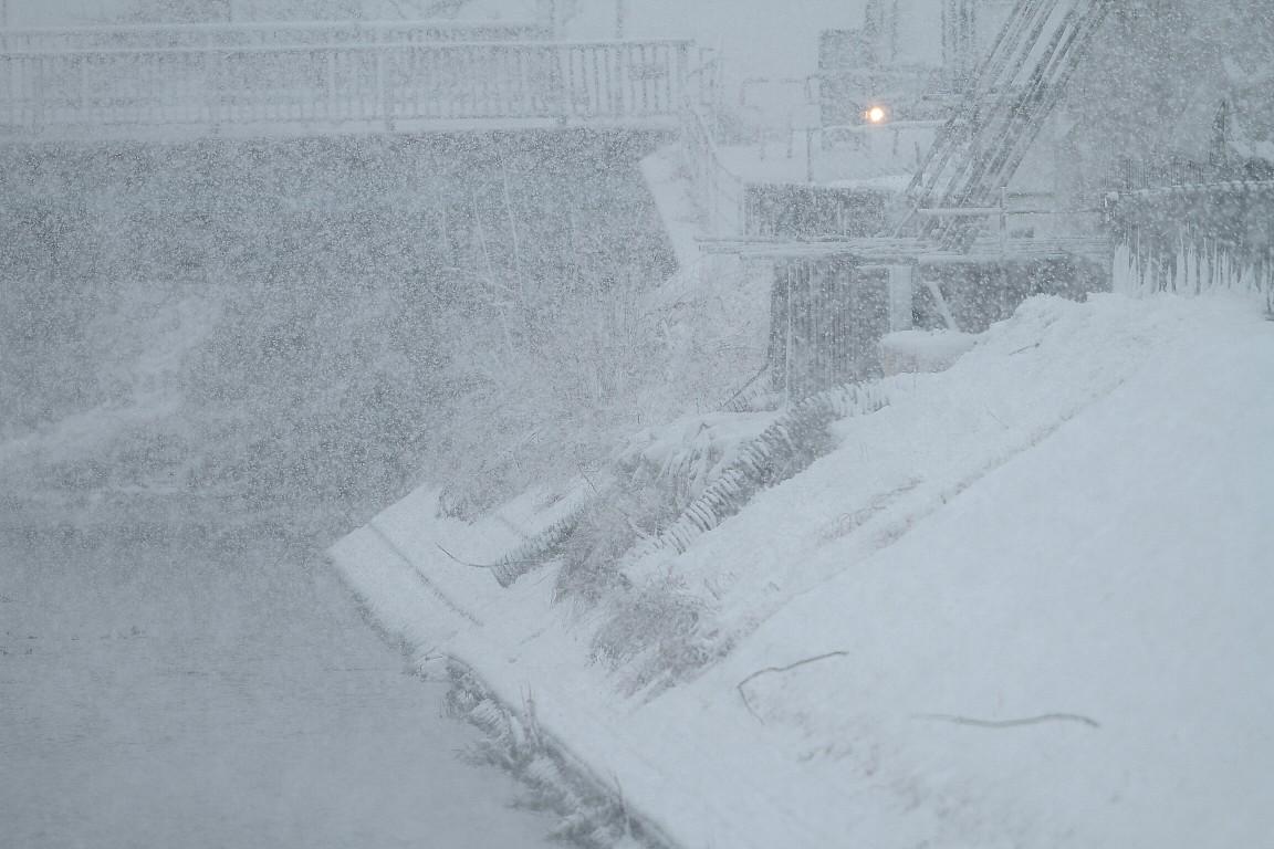 2月29日 (水) 雪 _e0146518_1643013.jpg