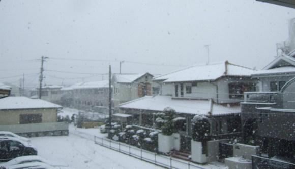 複雑な2月29日....大雪です。_b0137932_1110598.jpg