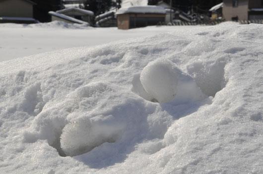 雪模様5_c0093046_1911576.jpg