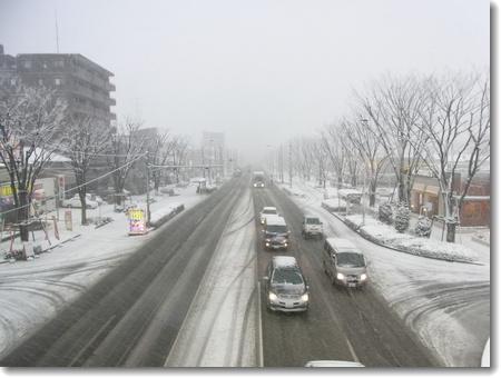 また雪が積もりました_c0147448_10545549.jpg