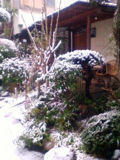 雪、よく降るな~_f0138653_10391244.jpg