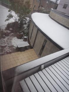 雪 予報が的中_e0109554_91058.jpg
