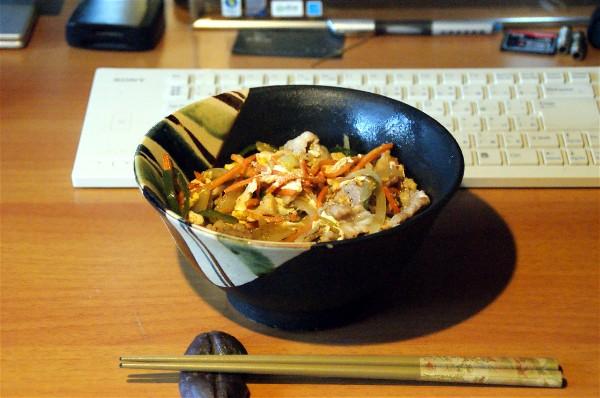 お昼は豚丼_e0166355_12105528.jpg