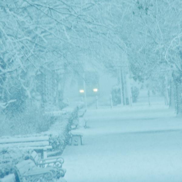雪景色。_b0022268_21201615.jpg