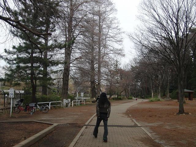 石神井公園の妖怪展_d0061678_23534279.jpg
