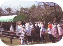 都城市生活学校連絡会【活動報告】_a0226881_1643143.jpg