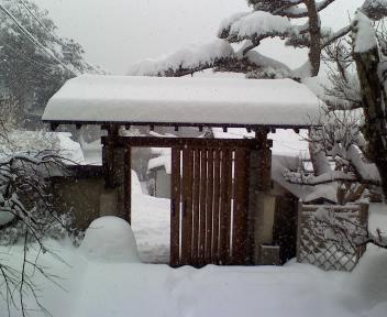 積雪あり‥なう!_f0125182_83185.jpg