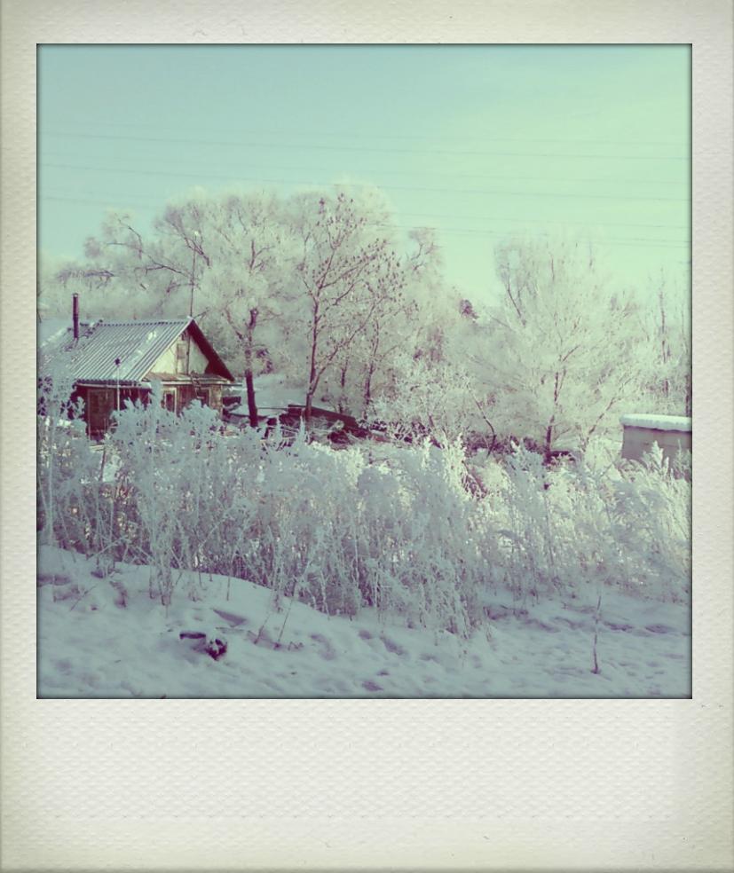 雪~や、コンコン_f0145483_1827349.jpg