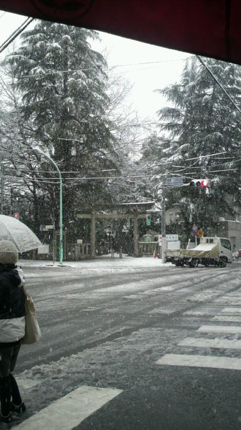雪景色_a0075684_174934.jpg