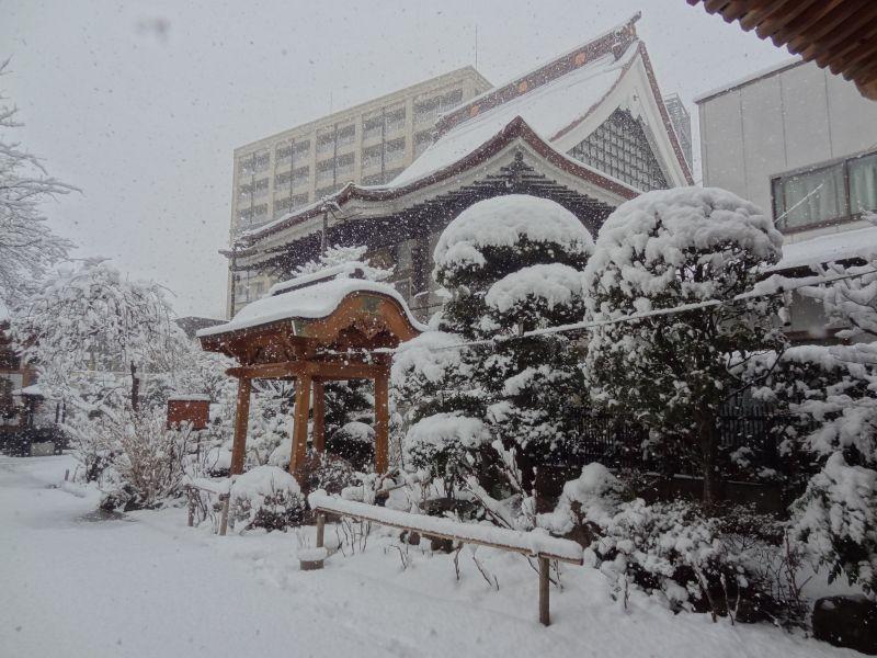 雪_e0187286_10141563.jpg