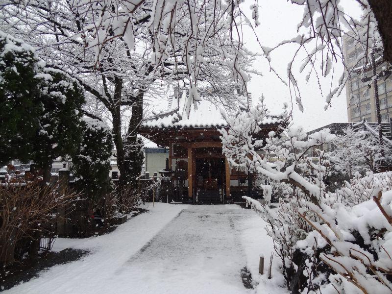 雪_e0187286_10143789.jpg