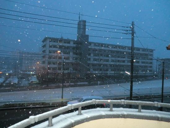 雪が止んだぞー!_e0119092_19245187.jpg
