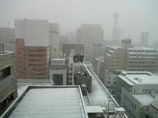 雪が止んだぞー!_e0119092_19263183.jpg