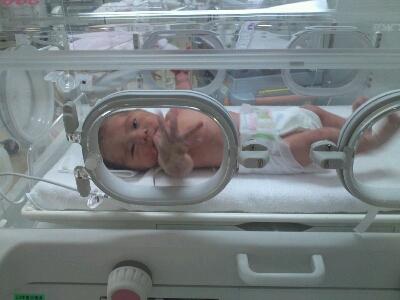 生まれました!_c0228895_91748.jpg
