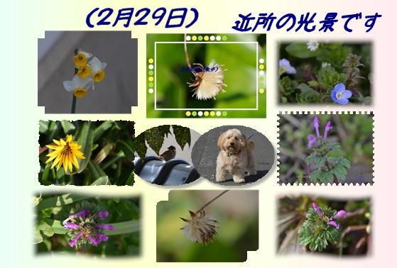 f0059495_2125943.jpg