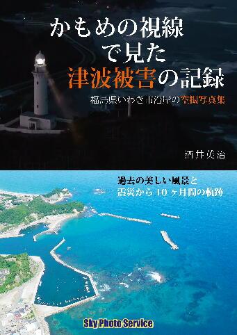 「かもめの視線で見た津波被害の記録」_e0068696_20383899.jpg