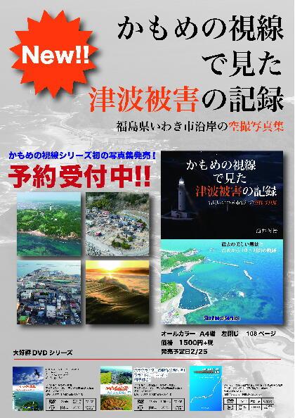「かもめの視線で見た津波被害の記録」_e0068696_20385787.jpg