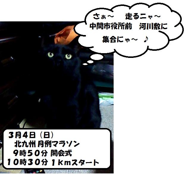 b0130100_2319655.jpg