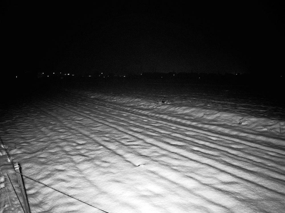 雪の日_e0004009_1563988.jpg