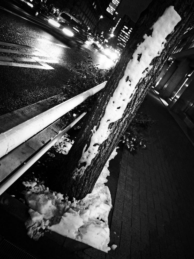 雪の日_e0004009_1565027.jpg