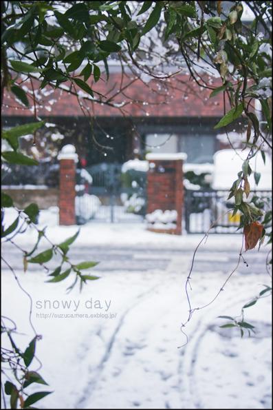 一日限定、雪景色_f0100215_0134428.jpg